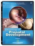 Biology of Prenatal Development DVD