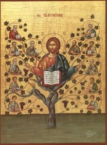 He is the Vine, we are the branches