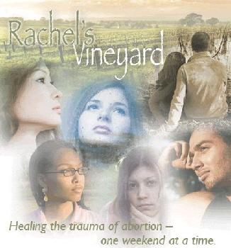 Rachels-Vineyard2