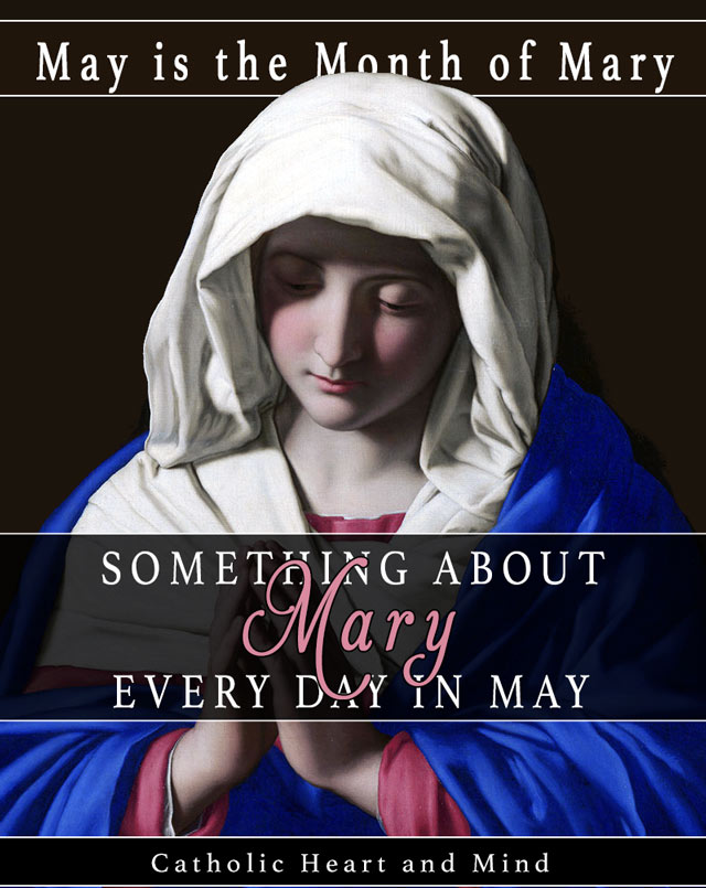 Something About Mary Every Day In May