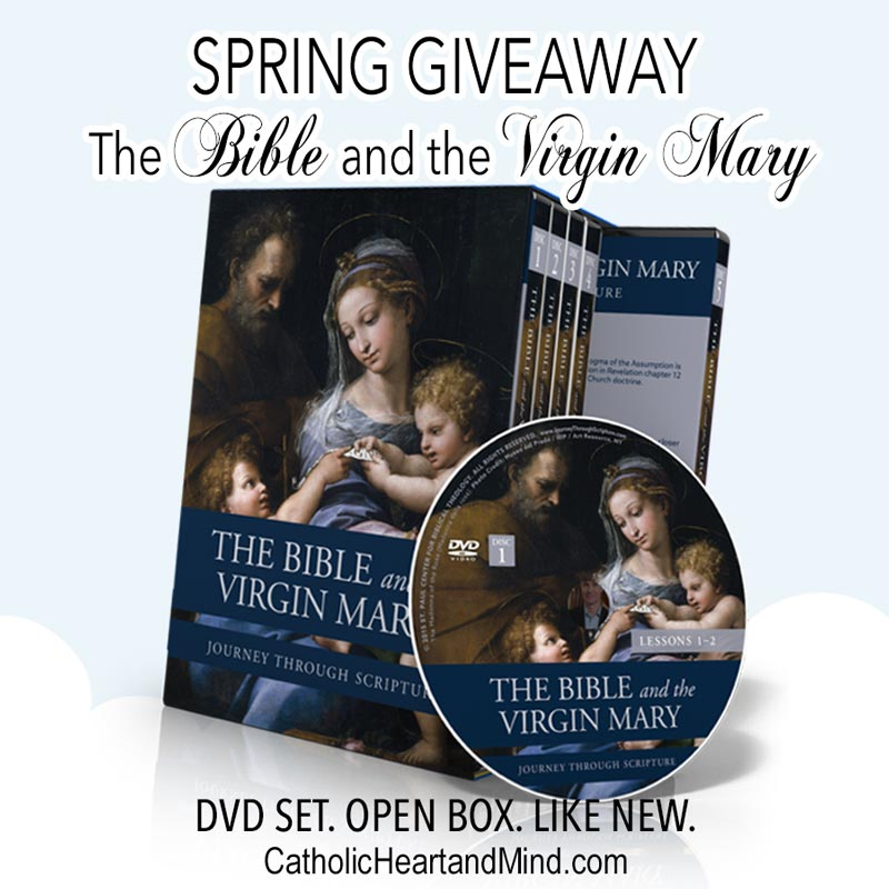 Banner for the Bible and the Virgin Mary DVD Set Spring 2020 Giveaway